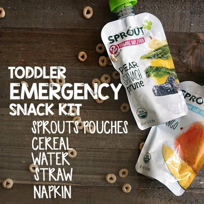 easy snack kit for a toddler ra