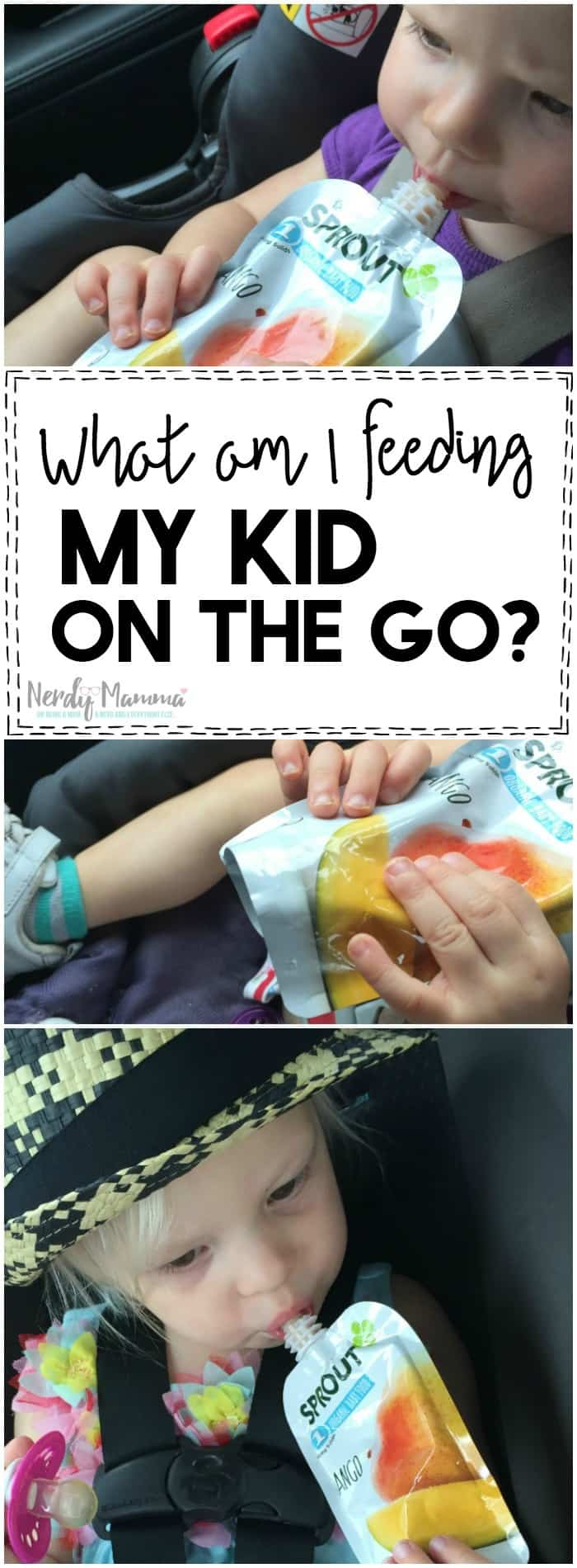 I love this mom's thoughts on what am I really feeding my kid on the go. She's so right! I had no idea.
