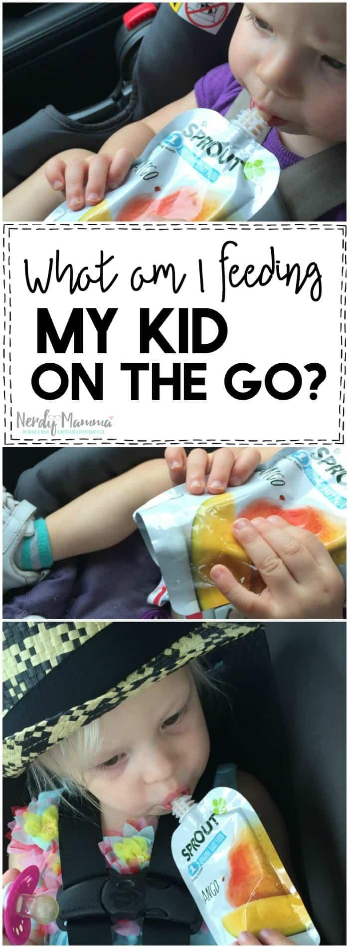 I love this mom's thoughts on what am I really feeding my kid on the go. She's so right! I had no idea.