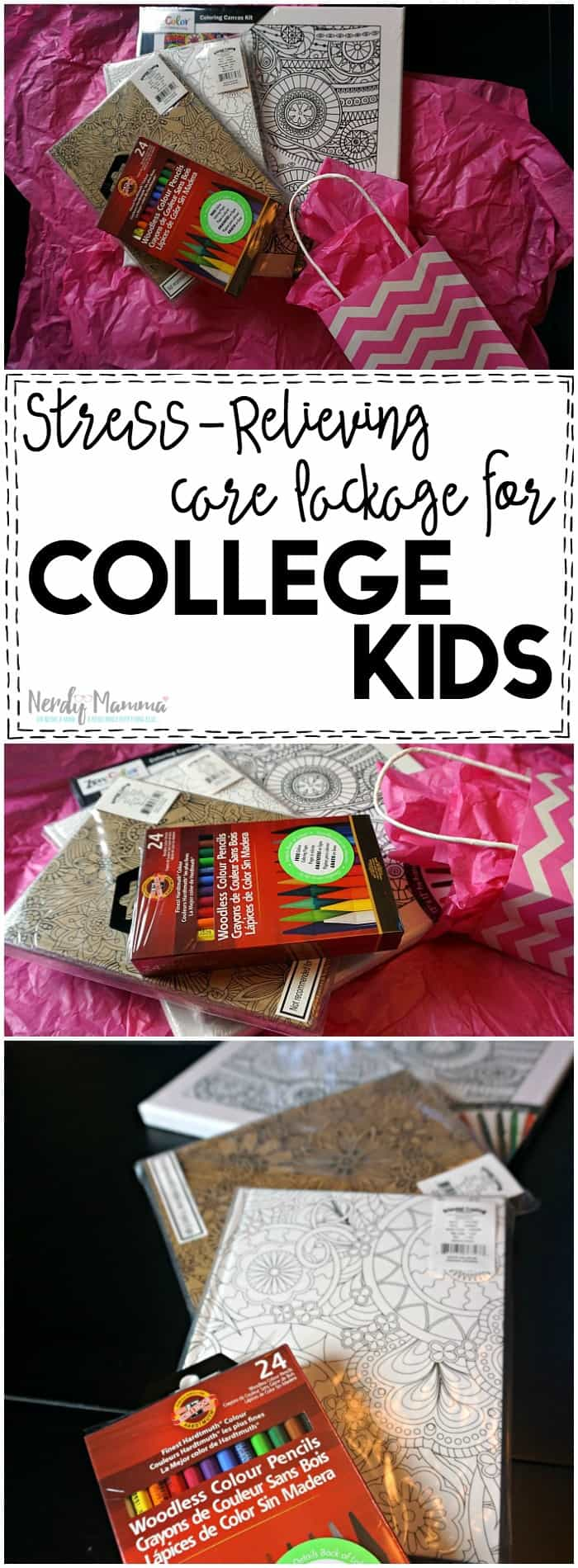 This Stress-Relieving Care Package for College Kids is kind of genius. I love the idea!