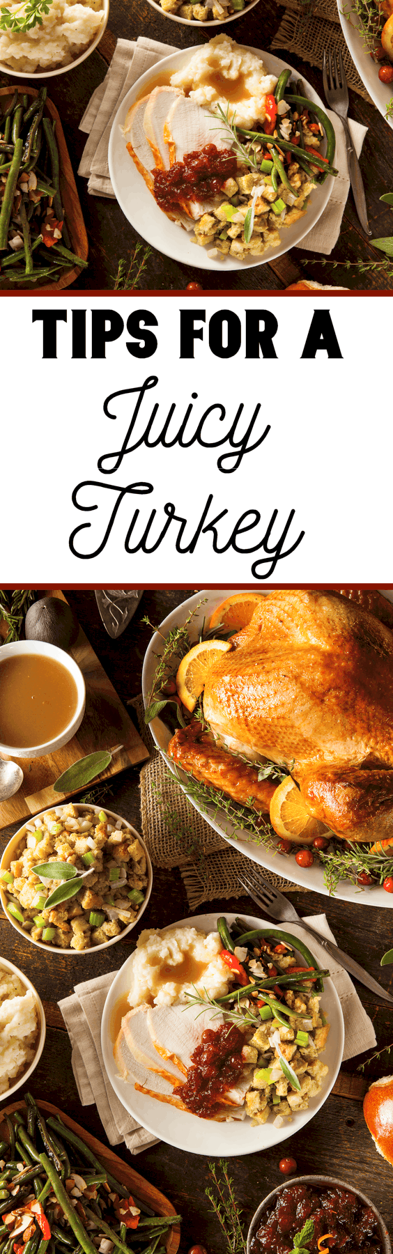 The worst thing on Thanksgiving is a turkey that is too dry to eat. By following these tips of a juicy turkey you won't have to worry about a dry turkey.