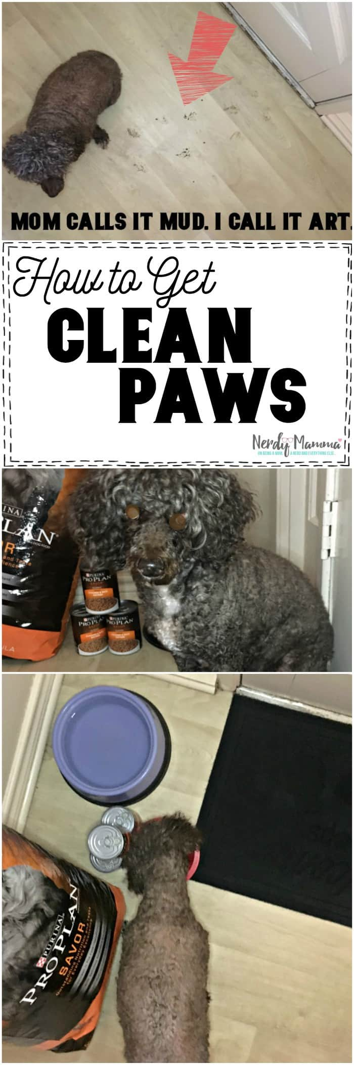 how to get clean paws