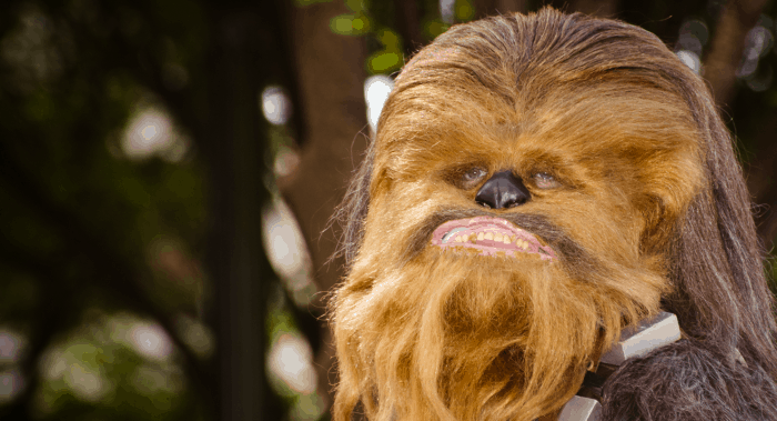 Let's be really clear--Chewbacca is the unsung hero of the entire Star Wars series. And for true Star Wars fans, the only real gift is the gift of fandom. So let's tip our hats to Chewie with these 35 Chewbacca Gifts - A Star Wars Gift Guide. #nerdymammablog #starwars #starwarsgiftguide #starwarsgifts #starwarsgiftideas #chewbaccagiftguide #chewiegiftguide #isitchewieorchewy