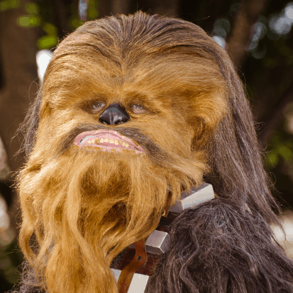 35 Chewbacca Gifts for the–Rawwwwr!