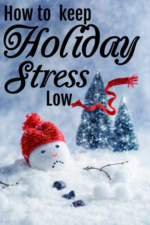 The holidays are always a little love/hate thing for any adult. So much going on and so little time to really enjoy everything. And sometimes, the stress can be overwhelming. This is How to Keep your Holiday Stress Low, because it's important to just have fun. #nerdymammablog #holiday #stress