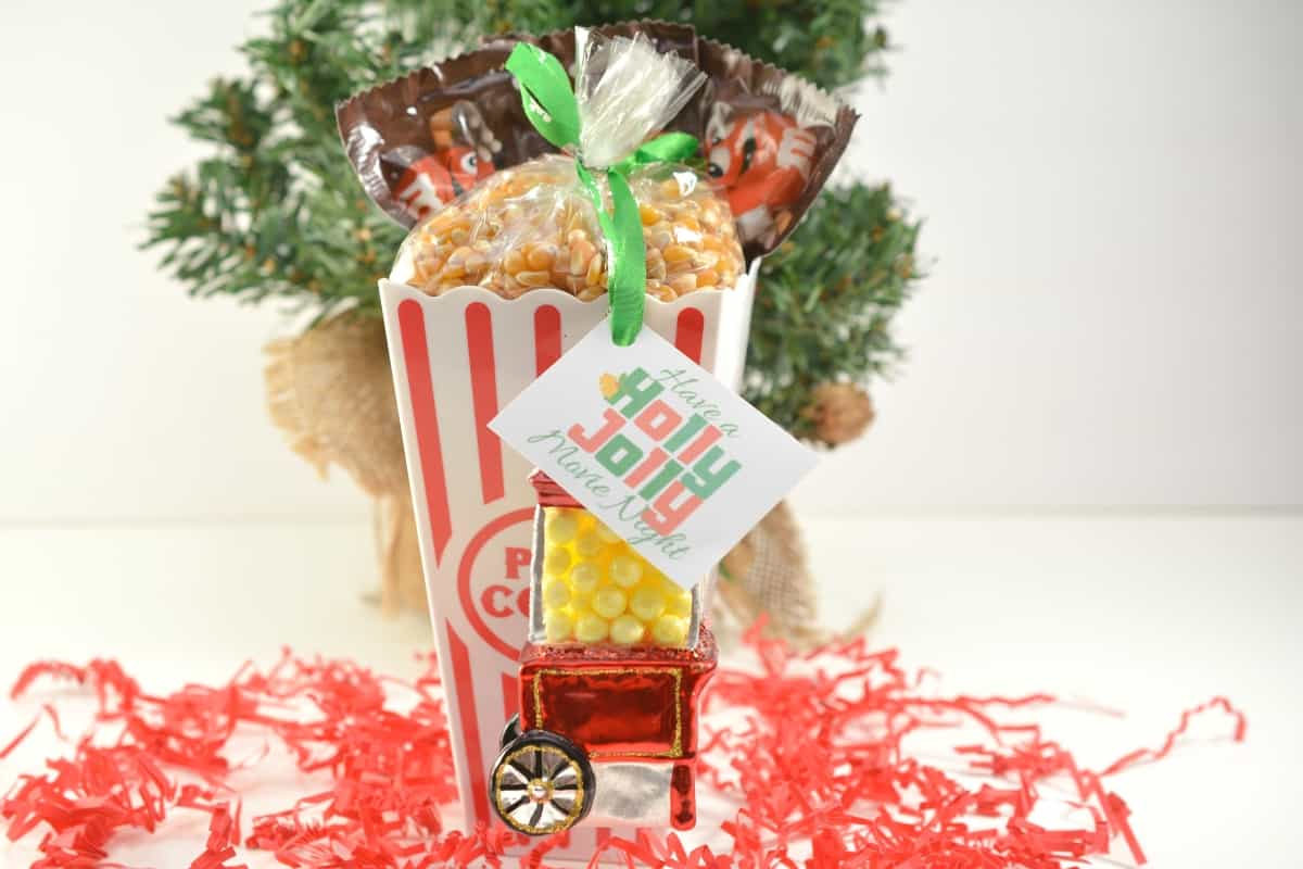 The perfect gift for people that enjoy a movie at home on their night off (which is every-freaking-person-on-the-planet, now that I think of it). It's fun, simple, AND the Holly Jolly Movie Night Gift Kit is super thoughtful because you can customize it to the person's favorite treats! #nerdymammablog #christmas