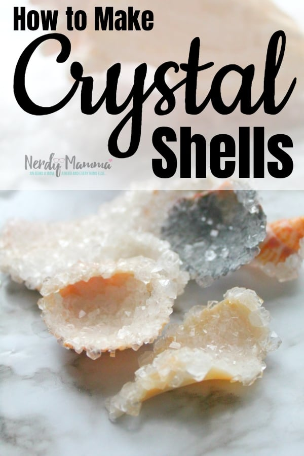 Although this is a little more science-ey than I normally can manage, we figured out How to Make Crystal Shells and the kids are now beside themselves with glee. #nerdymammablog #crystal