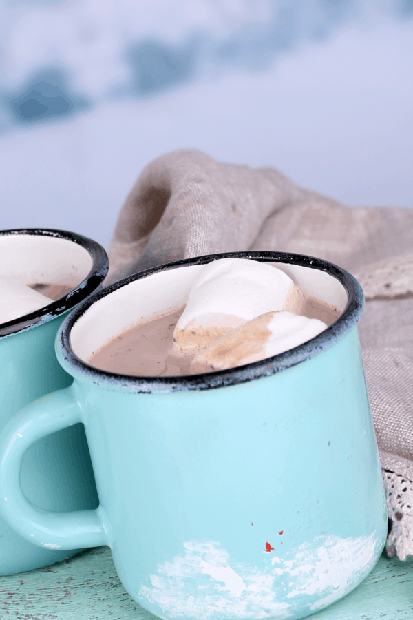 I'm so tired of this cold weather! It's back-and-forth and I just want to be warm. Thank goodness this Vegan Hot Chocolate ( Dairy-Free Hot Cocoa ) warms me up! #nerdymammablog #hotcocoa #hotchocolate #vegan #dairyfree