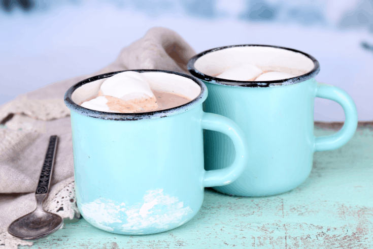 Vegan Hot Chocolate ( Dairy-Free Hot Cocoa )