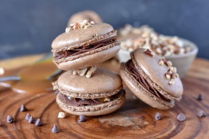 Turtle French Macaron Cookie Recipe