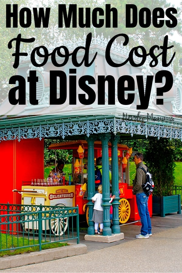 When I was sitting down to plan our trip to Disney World, one of the biggest challenges that came to mind was: How Much Does Food Cost at Disney World? Here's the details and how to save. #nerdymammablog #waltdisneyworld #foodatwaltdisneyworld #savemoneyatwaltdisneyworld