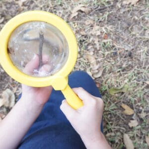 3 Super-Easy Ways to Explore STEM with Preschoolers