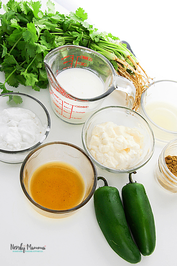 how to make a dairy-free dip