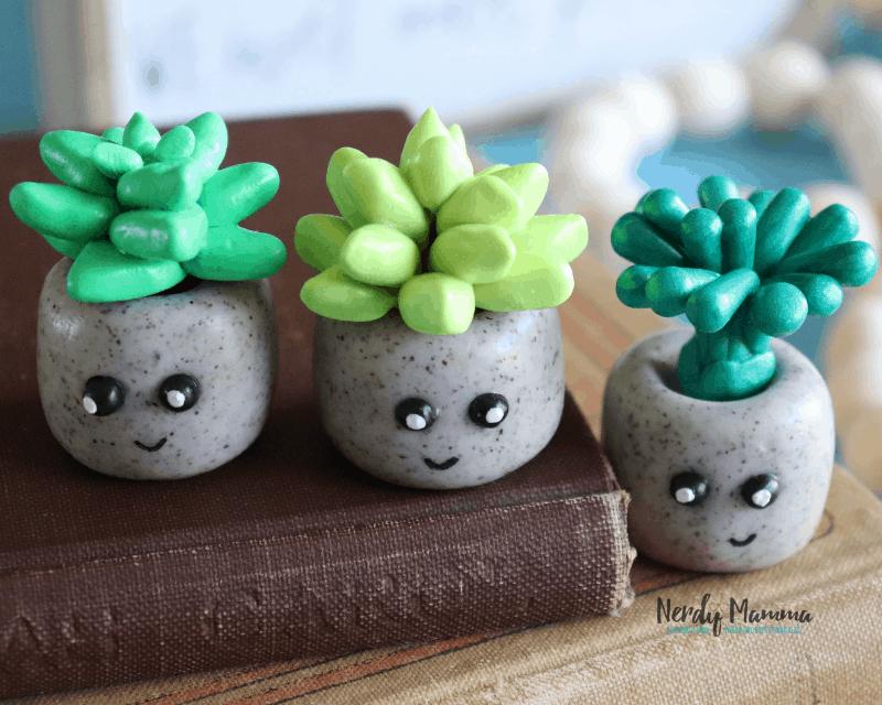 Clay Succulent Craft